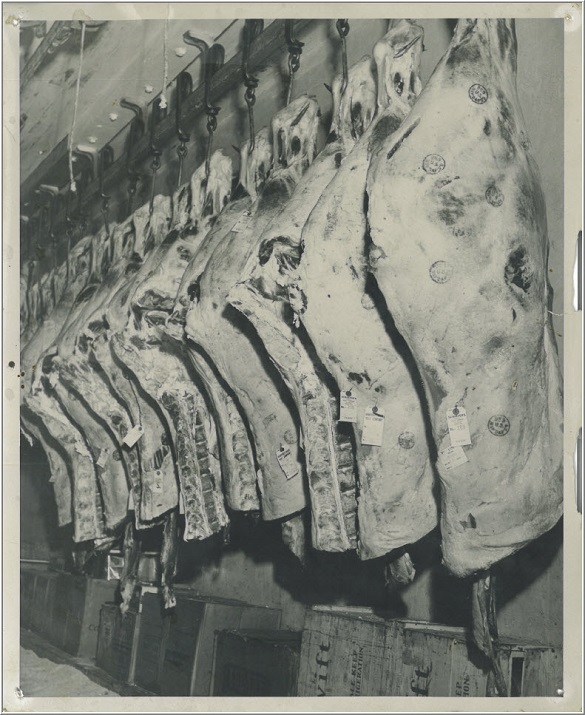 Half steers hanging at Schaefer's Meats in 1950's
