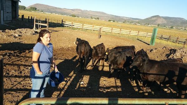 Andrea with half Angus - half Wagyu cows