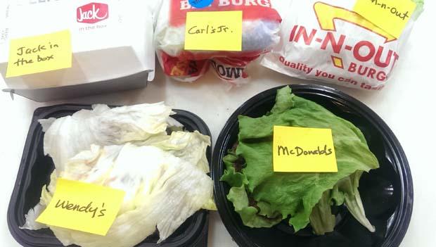 Five Low Carb Lettuce Wrap Hamburgers
